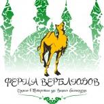 Верблюжье молоко, Казань