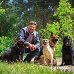 Дрессировка без насилия над собакой, Казань