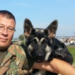 Персональный тренер для Вашей собаки, Казань